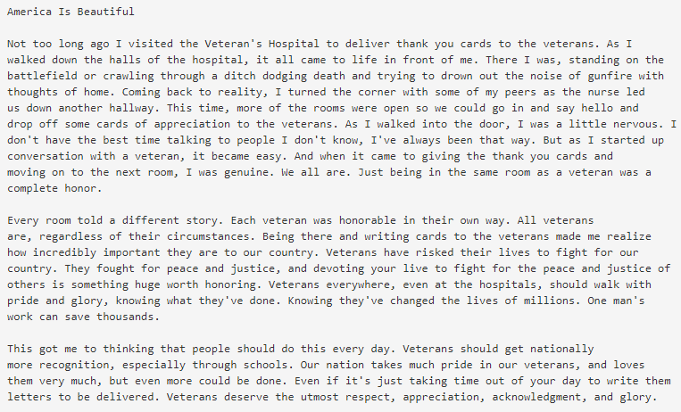 veterans day free essay