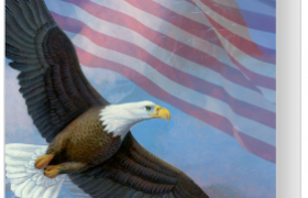 Veterans day eagle cards