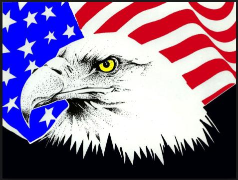 U.S flag veterans day clipart