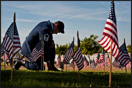 Veterans Day Pictures Free Download HD Happy Veteran Posters